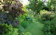 Hall Farm Garden, Gainsborough, Lincolnshire